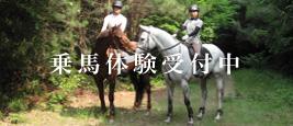 乗馬体験受付中
