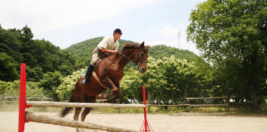 岐阜 乗馬体験|ホースファーム・カトー|岐阜県各務原市にある乗馬クラブ